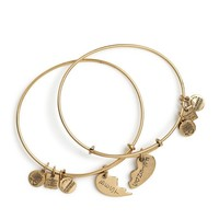 Alex and Ani Best Friends Set Of 2 Charm Bangles - Russian Gold