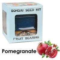 Eve's Pomegranate Bonsai Seed Kit, Fruit-Bearing, Complete Kit to Grow Pomegranate Bonsai from Seed