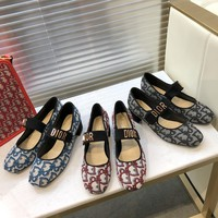 Dior Fashion casual single shoes