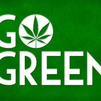 Marijuana Go Green College Print Poster 19 x 13in