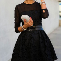 Black Mesh Long Sleeve Floral Lace Embroidery Skater Dress