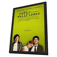 The Perks of Being a Wallflower 11x17 Framed Movie Poster (2012)