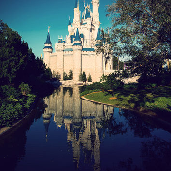 The Disney Castle  Art Print by Janice