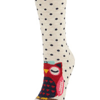 Mother and Baby Owl Sock   Multi   Accessorize
