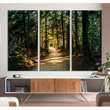 Large Natural Landscape Wall Art Relaxing Forest Canvas Print