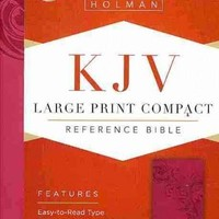 Holy Bible: King James Version Bible, Pink, Leathertouch