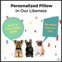 Customized Pet Cushions (20% OFF) (25% OFF for 40CM)