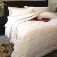 Natural Comfort Classic White Down Alternative Comforter or Duvet Insert Year Round Filled, Queen