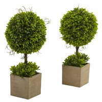 Boxwood Topiary with Planter (Set of 2) - Green