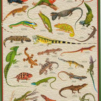 Exotic Lizards Iguanas Reptiles Education Poster 24x36
