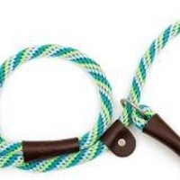 "Mendota Dog British Slip Lead Leash 1/2"" x 4' Seafoam"