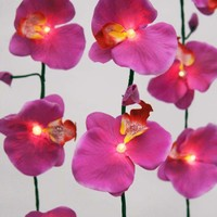 Pink Orchid String Lights - New Summer Finds - Lighting