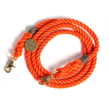 Orange Rescue Dog Leash, Adjustable