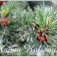 Winter Pine Greens and Cone Holiday Cards, Treat Yourself, Colorful, Unique Cards, Make a Lasting Impression, Set of 10, Envelopes Included