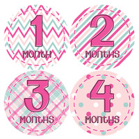 Baby Girl Monthly Baby Stickers Style #276
