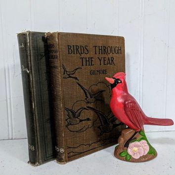 Set of Bird Books Two Vintage Books / Our Bird Friends and Foes by William Dupuy / Birds Through The Year by Albert Gilmore / Ornithology