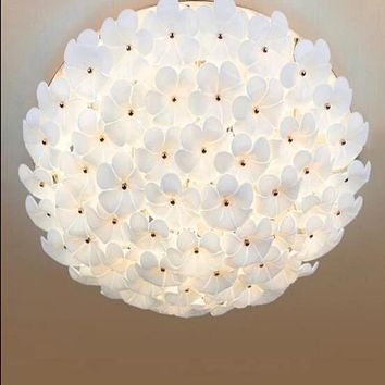 Minimalist Garden Room Ceiling Living Room Remote Control LED lamp