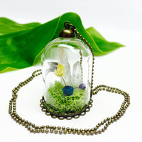 Crystal Terrarium Necklace, Glass Bottle Pendant, Real Moss, Terrarium Jewelry, Dried Flowers, Preserved Moss, Ball Chain Necklace, Crystals