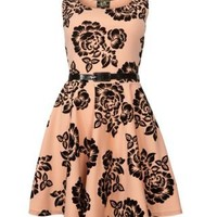 New Look Mobile   Parisian Apricot Flocked Floral Dress