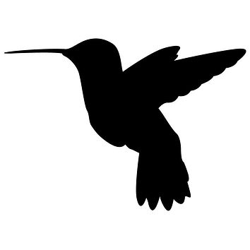 Black Hummingbird Waterproof Temporary Tattoos Lasts 3 to 4 days Choose Small, Medium or Large Sizes
