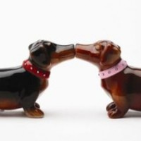 Pacific Magnetic Salt and Pepper Shaker Set (A Long Love Affair) - 2 1/2 inch (2 units)
