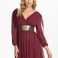 Wine Red V-neck Mesh Long Sleeve Belted A-Line Pleated Mini Dress