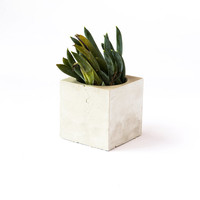 CUBE  //  Concrete Succulent Planter + Candle Holder by The Armory