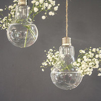 Glass Hanging Vase, Lightbulb