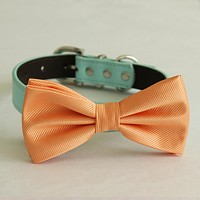 Pale orange bow tie collar Leather dog Ivory blue orange copper Navy brown or Gold collar dog of honor dog ring bearer Puppy XS to XXL collar and bow tie, adjustable