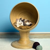 Bamboo Kitty Ball Bed at Brookstone—Buy Now!