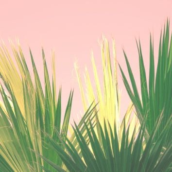 Neon Tropics II Art Print by The Dreamery | Society6
