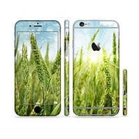 The Sunny Wheat Field Sectioned Skin Series for the Apple iPhone 6