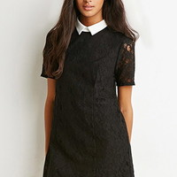Contrast Collar Textured Dress