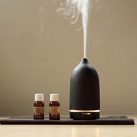 Casa Aroma Genie Ultrasonic Diffuser by Toast Living – With Therapeutic Benefits