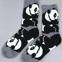 The Core Collection Panda Socks in Black