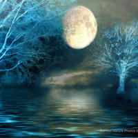 """Nature Photography, Dreamy Blue Moon Fantasy Nature, Full Moon Over Lake, Surreal Fine Art Nature Photography 9"""" x 12"""""""