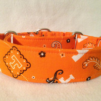 University of Tennessee Martingale or Quick Release Collar