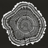 Growth Rings – 65 Years – Black Art Print by Cat Coquillette