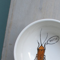 Hello cockroach bowl white insect quirky funny by catherinereece
