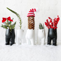 "SET OF FIVE Tushiez Winter Greens - Size 5"" - Black or White - Matte Or Glossy - Stocking Stuffer"