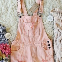 Soft + Destructed Overalls