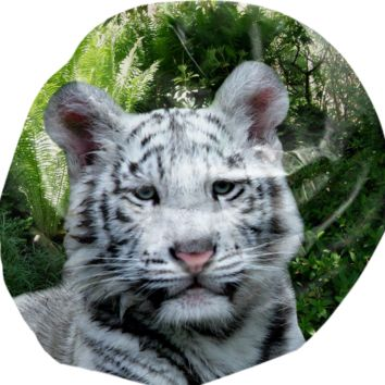 White Tiger Bean Bag created by ErikaKaisersot | Print All Over Me