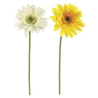 5 Artificial Stems for $11.99