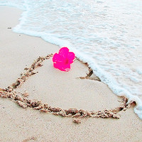 Sunny, beach, heart, hibiscus - inspiring picture on Favim.com