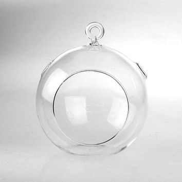 6-Pack, Hanging Globe Glass Terrarium Air Plant Candle Holder, 5-inch, with Hook