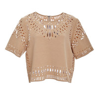 Sea Camel Cut Out Embroidery Cropped Top Camel