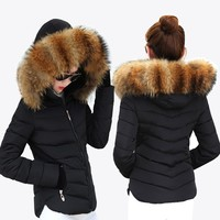 Hot! New Winter Jacket Women 2017 Fashion Women Coat thick winter coat with hood Slim Women's warmth garden Women's Down Jacket