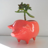 Ceramic Pig Planter Vintage Design in Coral Pink Succulent Planter Retro Sponge Holder Home Decor