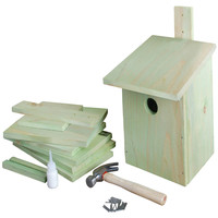 Build It Yourself Birdhouse, Natural, Art Kits & Crafting