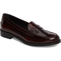 Tod's Penny Loafer (Women) | Nordstrom